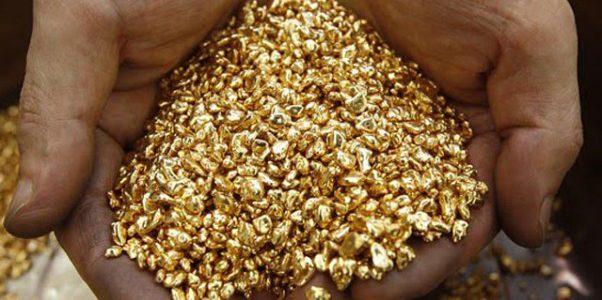 2014 – La miniera d'oro dei dati – Articolo di Giovanni Sylos Labini su Il Sole 24 Ore del 26/01/2014