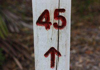 AIPAS reaches 45 Members!